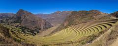 Terraces of Pisac / Террасы Писака (Vladimir Zhdanov) Tags: travel peru cusco andes mountains nature landscape ruins sky pisac rock field grass