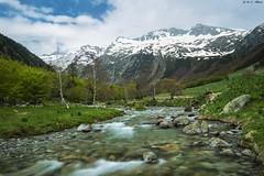 Río Noguera Ribagorzana (sostingut) Tags: d750 nikon tamron haida seda río bosque valle montaña árbol madera roca nube cielo nieve primavera pirineos
