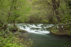 Balkaya's majesty (oskaybatur) Tags: waterfall nature vize türkiye turkey turkei april spring 2018 oskaybatur şelale balkaya trakya pentaxkr longexposure landscape nisan ilkbahar green pentaxart justpentax kırklareli