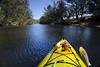 Pinjarra Start Point (Macr1) Tags: 61403327236 ilce5100 sony sonyilce5100 sonyα5100 α5100 markmcintosh macr237gmailcom river shore kayak kayaktouring kayaking australia wa westernaustralia murrayriver perceptionacadia perceptionkayaks