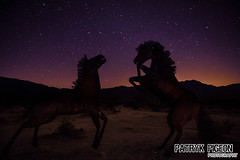 Anza_Borrego_California_2018_1 (patryk_pigeon) Tags: anza borrego desert horses iron statues night stars long exposure patryk pigeon cali californie california sky sand cheval