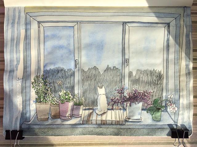 Установка пластиковых окон в деревянном доме.