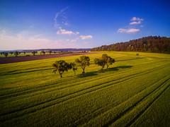 Good Days (M-Z-Photo) Tags: colmberg bayern deutschland de drohne luftbild landschaft felder frühling sommer natur bäume