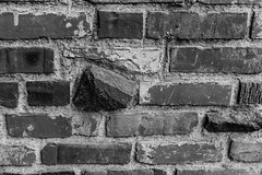 Brick Wall (Thad Zajdowicz) Tags: monochrome blackandwhite bw black white zajdowicz pasadena california usa architecture brick wall pattern abstract shapes lines angles geometric canon eos 5d3 ef50mmf12lusm 5dmarkiii dslr digital outdoor outside exterior availablelight lightroom primelens 50mm fineart wallart texture rough