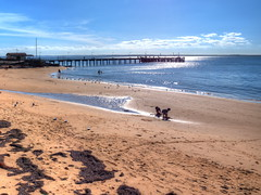 Autumnal beach bliss! (Digidoc2 - OFF for a little while) Tags: beach seashore coastline sand sea pier seagulls water clouds sky waves sun shimmering glistening seaweed footprints children seascape autumn