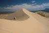 _DSF2803.jpg (kornheisltj17) Tags: sanddunes kelso mojave canine clouds blue sand desert boxer dog sky mojavedesert staffordshireterrier spring kelsodunes