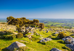 Dartmoor facing North (oliverwales) Tags: canon australian from sydney 6d 5dmk2 2470 colourful vivid tones street candid life stories people cliffs