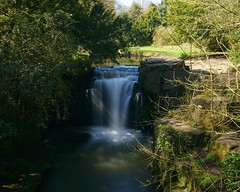 The old mills waterfall (WISEBUYS21) Tags: jesmond dene william lord armstrong waterfall old mill river ouseburn craggs green tree trees grass plain newcastleupontyne tyne heaton park pets corner spring wisebuys21 streem nelly dean bluesky tranquil still tyneandwear northeastofengland