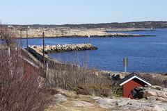 Vikerkilen 1.2, Hvaler, Norway (Knut-Arve Simonsen) Tags: asmaløy hvaler norge норвегия norway noriega norwegen norvegia norvège नॉर्वे 挪威 ノルウェー நோர்வே νορβηγία sydnorge sørnorge østlandet glomma oslofjorden østfold norden scandinavia скандинавия э́стфолл фре́дрикстад гло́мма ослофьорд vann hav benk gress tre hytte brygge water sea bench grass tree cottage pier banco de mar agua hierba árbol cabaña muelle wasser meer bank gras baum hütte acqua panca albero molo вода морской скамейка трава дерево коттедж пирс erba mare vikerkilen