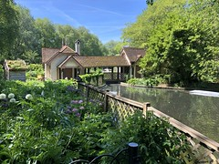 The Park Keepers Cottage  HFF (Eleanor (No multiple invites please)) Tags: cottage parkkeeperscottage fence flowers plants bridge stjamesspark may2018 london