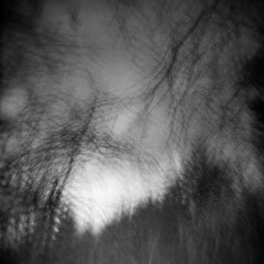 Long Pond #4 (LowerDarnley) Tags: holga multipleexposures winchester ma middlesexfellsreservation morningwalk longpond trees earlyspring branches