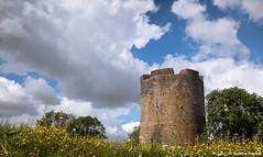 Château-fort de Guise (Quentin Douchet) Tags: aisne châteaufortdeguise france hautsdefrance castle château châteaufort donjon landscape paysage