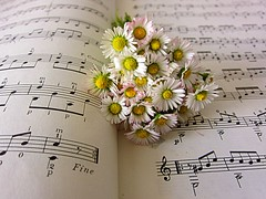 flowers and music (majka44) Tags: flower music note book lifestyle light yellow macro 2018 nice small beauty romantic creation