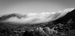 Montagnes - Nuages (alexandreweber_zootrope) Tags: extérieur nature montagnes monts monochrome noirblanc blackwhite ciel brouillard brume nuages paysage phénomènesatmosphériques forêt ardèche france ngc