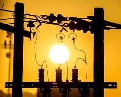 Sunrise powerplant (Ghoul Fotografia) Tags: sunset sunrise sun mexico burningsky yellow sky skyporn