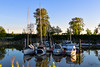 Milltown Marina & Boatyard (SonjaPetersonPh♡tography) Tags: vancouver bc britishcolumbia canada nikon nikond5300 marina milltown milltownmarinaboatyard bentleyst facility moorage boaters boats marpole waters fraserriver northarm straightofgeorgia marinestore yachts restaurant sales vessels recreation docks reflections waterreflections sunset