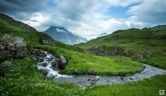 fresh water (yves_matiegka) Tags: alps switzerland mountains bernesealps berneroberland water stream meadow longexposure