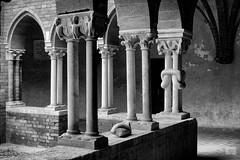 517201805aCHIARAVALLE-9-Modifica (GIALLO1963) Tags: culture churches monastry cloister europe lombardy milano chiaravalleabbey chiaravallemilano canoneos6d ze milvus250m zeiss architecture architettura