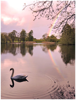 Reigate Priory Lake double rainbow