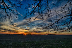 A Treemendous Sky (tquist24) Tags: goshen hdr indiana nikon nikond5300 outdoor branches clouds evening farm field geotagged rural silhouette silhouettes sky sun sunset tree trees unitedstates