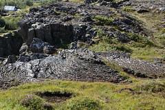 20170817-105957LC (Luc Coekaerts from Tessenderlo) Tags: iceland isl laugarvatn laugarvatni suðurland þingvellir thingvellir stone rock lavasteen lava lavarock splitdef171059thingvelli public nobody cc0 creativecommons 20170817105957lc coeluc vak201708iceland