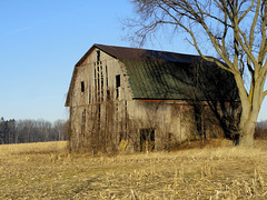 Barn (joeldinda) Tags: eatoncounty sunfieldtownship building michigan tree sky farmyard barn winter lightandshadow shadowplay january fields stubble 1363 dsch55 sonydsch55 sony pocketcam 2012 sonycybershot cybershot