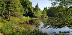 See (1elf12) Tags: see friedhof cemetary hannover stöcken germany deutschland lake park 7dwf