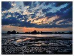 River Elbe at low tide (mechanicalArts) Tags: elbe ebbe flus sonnenuntergang low tide cof024mari cof024dmnq cof024chon