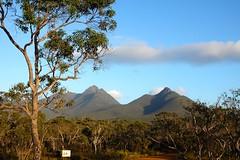 STR 107 (newnumenor) Tags: westernaustralia australia stirlingranges mountains