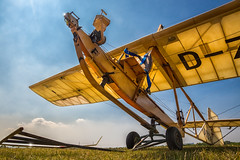 Not for the faint of heart (FocusPocus Photography) Tags: flugzeug plane segelflieger glider oldtimer vintage sg38 historisch historic