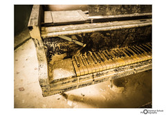 Beelitz - Heilstätten (E-M1.de) Tags: beelitz beelitzheilstätten hartmutschulz lostplaces photography