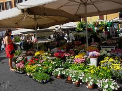 Street Market (prana widakso) Tags: travelight backpacker street market flower rome italy roma lazio italia