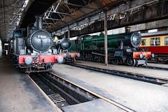 Engine shed (Mister Oy) Tags: didcot steam engine locomotive loco shed heritage vintage nikond850 nikon2470mmf28afs train