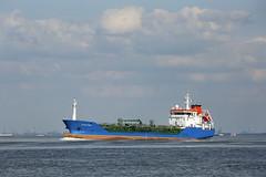 STRAITVIEW (angelo vlassenrood) Tags: ship vessel nederland netherlands photo shoot shot photoshot picture westerschelde boot schip canon angelo walsoorden straitview tanker