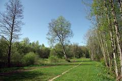 Jüri terviserada (Jaan Keinaste) Tags: pentax k3 pentaxk3 eesti estonia loodus nature jüriterviserada maastik landscape kevad spring