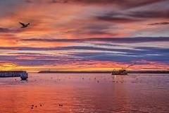 a pescar (Mauro Esains) Tags: buque pesquero barco mar agua paisaje nikon sigma patagonia santa maría i