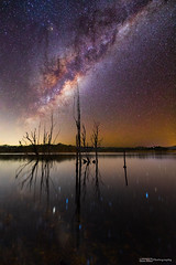 Milky Way rising over Lake Moogerah (tony.liu.photography) Tags: stars astro astrophotography universe galaxy space night sky colour canon 5d4 lake moogerah queensland australia landscape nightscape sigma 14mm art