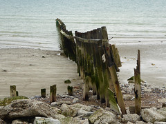 Sea Defence (Gilder Kate) Tags: climping beach westsussex coast southcoast sea sand groyne seadefence panasoniclumixdmctz70 panasoniclumix panasonic lumix dmctz70 tz70