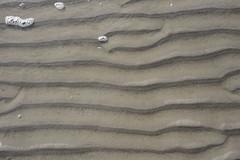 Am Strand - Riffel im Sand;St- Peter-Ording, Eiderstedt (1) (Chironius) Tags: nordfriesland schleswigholstein deutschland germany allemagne alemania germania германия niemcy nordsee merdunord mardelnorte northsea eiderstedt peterording stpeterording see meer maredelnord erde erdfarbe