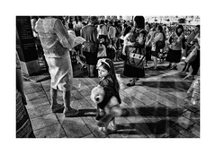 Girl with teddy bear (Jan Dobrovsky) Tags: jomhaacmaut girl celebration westernwall jerusalem independenceday mood nikond810 izrael evening people document israel monochrome blackandwhite