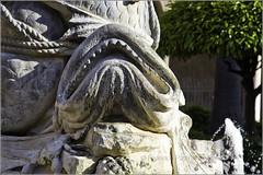 particolare pesce, fontana Brunnen Monreale (FedericoPatti) Tags: brunnen monreale 2018 fontana pesce statua colori colors canon 6d scultura arte art