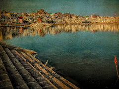 India series (Nick Kenrick..) Tags: pushkar lake hindu india attithidevobhavo