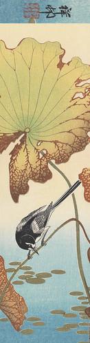 9610-Marque-pages // 19x5cm // Lotus