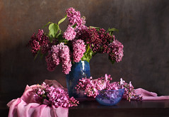 The Lilacs Are In Bloom (panga_ua) Tags: thelilacsareinbloom lilacs springtime april bloom flowers blueglassvase blueglassbowl bouquet fabric ukraine purple arrangement art artandcraftproduct blue bowl coloredbackground colorimage composition dark flower horizontal imagefocustechnique indoors lighteffect nopeople photography plant selectedfocus stilllife table variation woodmaterial vase cluster pink