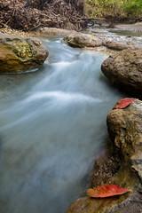 HT5A9255.jpg (Stephen C3) Tags: fall arborhillsnaturepreserve river