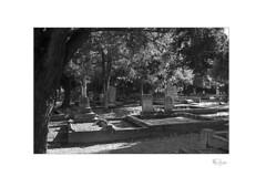Pioneer Cemetery (radspix) Tags: nikon nikkormat ftn tamron adaptall ii 3570mm cf macro f35 model 17a arista edu ultra 100 pmk pyro