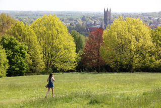 Canterbury cathedral from University of Kent, Canterbury campus, Spring 2018