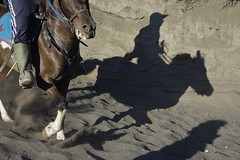 "INDONESIEN, Java, Menschen und Pferde in der Caldera (Sandmeer) Am Tengger-Vulkanmassiv (Bromo) ......INDONESIA, Java, people and horses in the caldera (sandy sea) At the Tengger volcano massif (Bromo), Schattenreiter,  17449/10008 (roba66) Tags: urlaub reisen travel explore voyages visit tourism roba66 asien asia inselstaat java ostjava bromo vulkan volcano ""gunungbromo"" stratovulkan tenggermassiv"" nationalpark ""semerumassif"" caldera sandmeer krater crater mountain berge range naturalezza mountains montana felsen rock rocks landschaft landscape paisaje nature natur tier tiere animal animals creature pferd horse cheval chevaux caballo trabalho menschen people leute reiter"