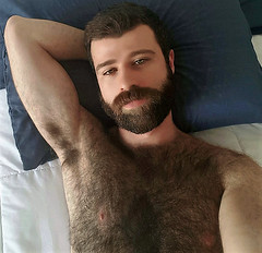 1379 (rrttrrtt555) Tags: hair hairy chest arms armpit flex shoulders muscles bed pillow sheets lounge eyes stare beard bedroom masculine m