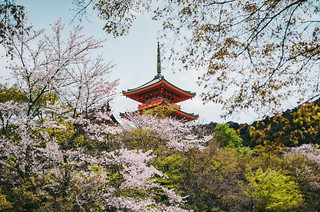 京都.清水寺三重塔|Kiyomizudera Temple